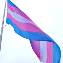 square trans flag